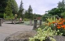 An Oasis of Calm in the City: VanDusen Botanical Garden