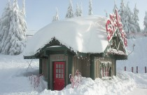 Best of Vancouver: Santa Photo Spots
