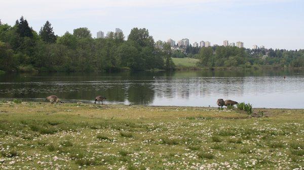 deer lake park burnaby