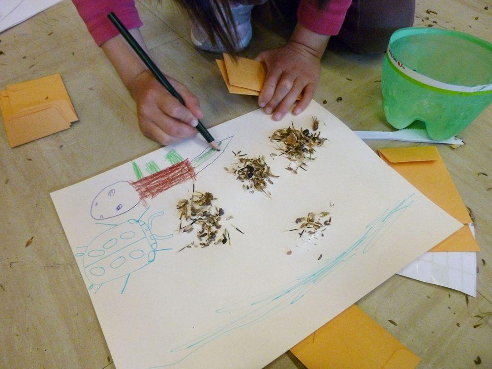 seed-workshop