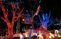 Holiday Traditions: Bright Nights in Stanley Park