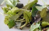Wellness: Tell Restaurants We Want It