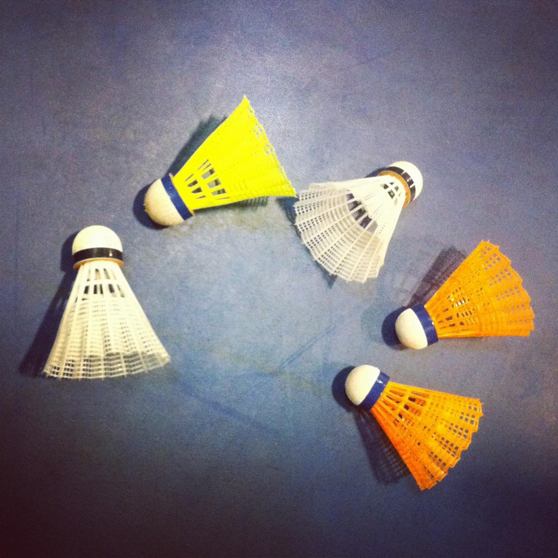 badminton vancouver birdies