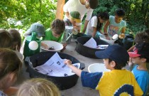 What to do in Vancouver: After School Camp at UBC Farm