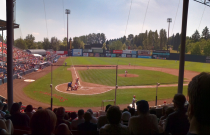 What to do in Vancouver: Watch the Canadians at Scotiabank Field at Nat Bailey