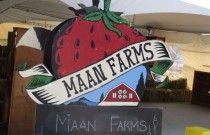Eat and Shop Local at Maan Farms