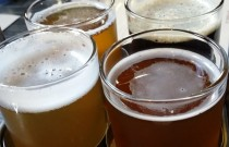 Steel Toad Brewpub: Checking out a New Mount Pleasant Eatery