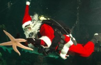 Holiday Fun with Scuba Claus