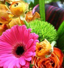 Image: Flowerbox