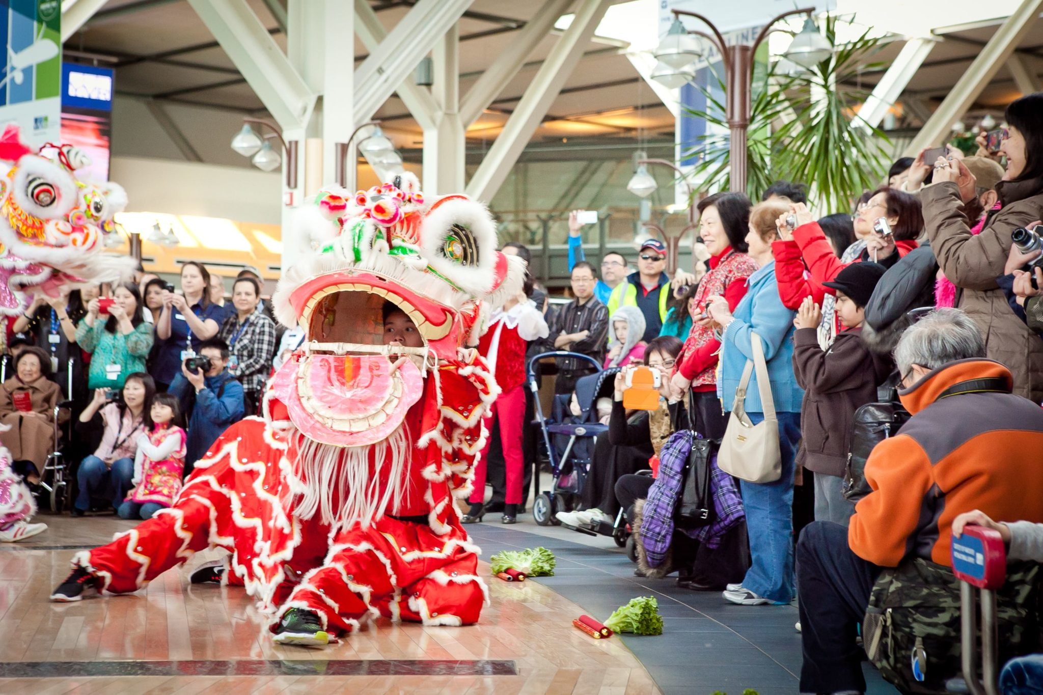 Vancouver Chinese New Year 2015 YVR