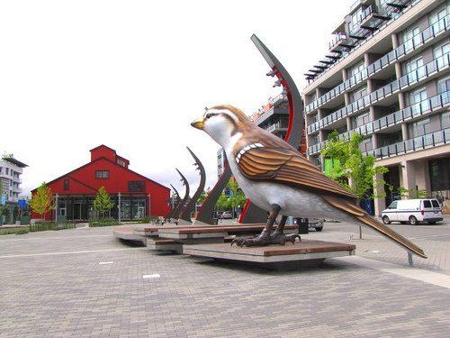sparrows_vancouver21.wordpress